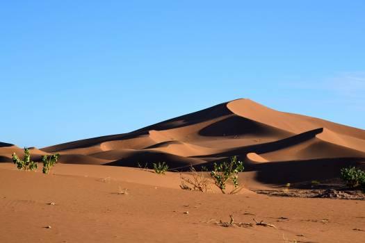 Dune Sand Desert Free Photo