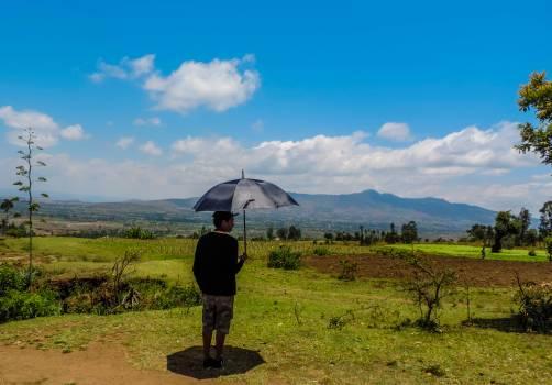 Umbrella Canopy Shelter Free Photo