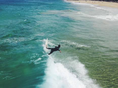 surfing surfer surfboard  Free Photo