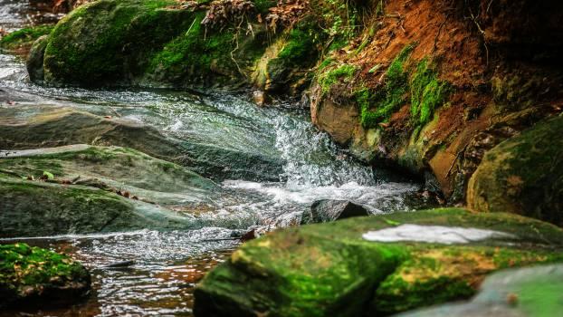 river stream rocks  Free Photo