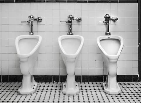 Toilet Room Bathroom Free Photo