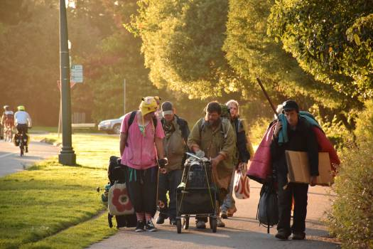 Pedestrian Man Walking Free Photo