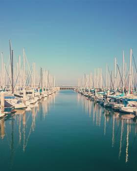 sailboats boating marina  Free Photo