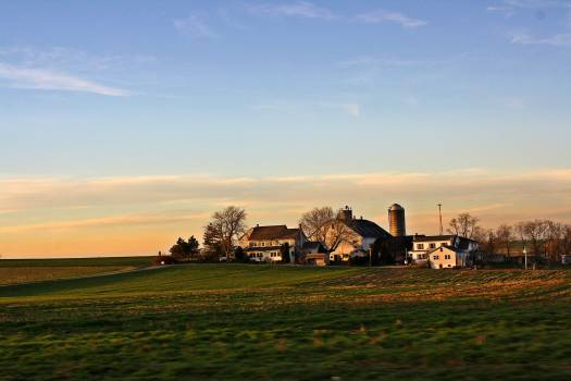 Amish Countryside  Rural  Free Photo