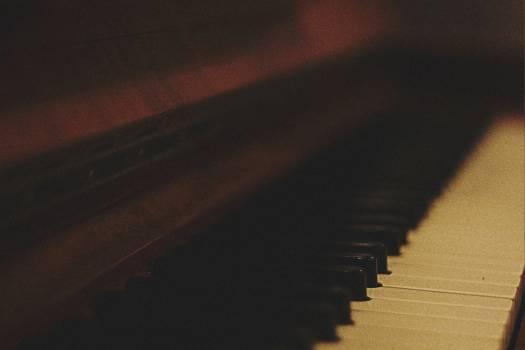 piano keys musical instrument  #19427