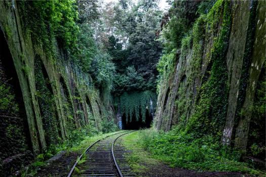 railroad railway train tracks  #19502