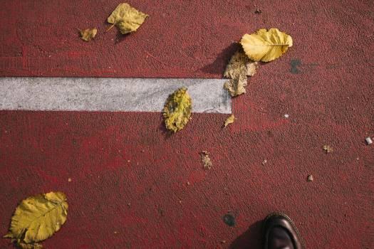 Doormat Mat Floor cover Free Photo