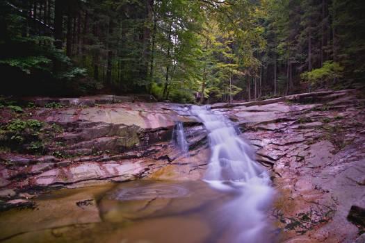 River Channel Stream Free Photo