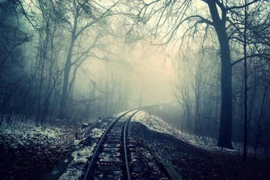 dark mist fog  #19760