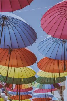 umbrellas colors colours  Free Photo