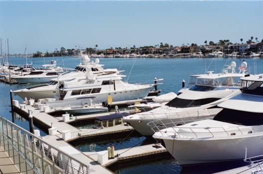 newport yachts boats  Free Photo