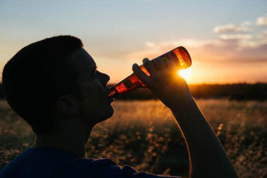 drinking beer bottle  Free Photo