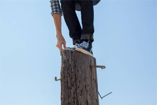 wood post climbing  Free Photo