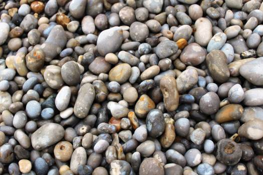 Lentil Legume Stone #198937