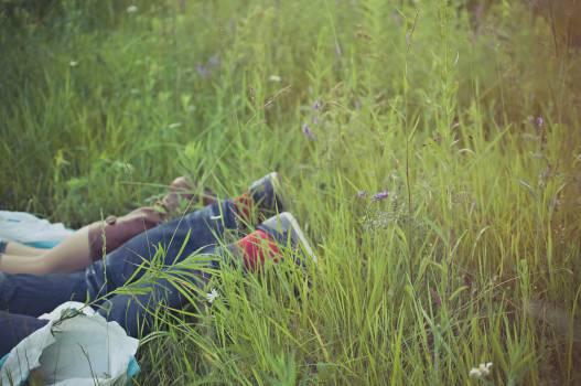 people legs lying down  Free Photo