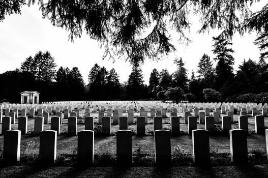 cemetery graves tombstones  #19938