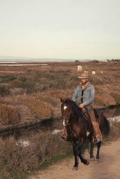 Cowboy Laborer Hired hand Free Photo