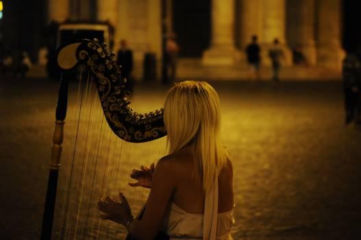 musician music harp  #20007