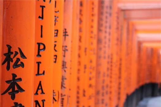asian writing orange  #20018