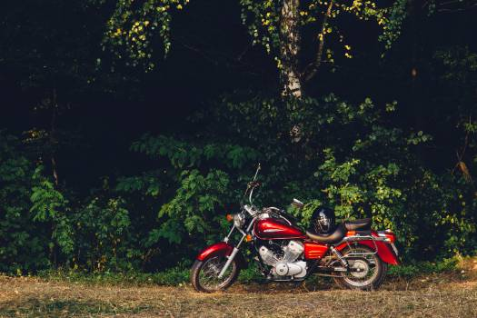motorcycle motorbike grass  Free Photo