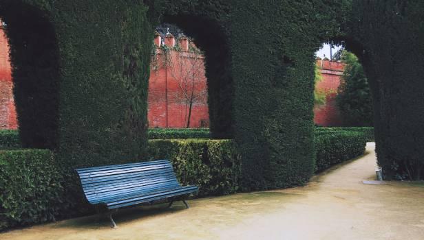 courtyard bench shrubs  Free Photo