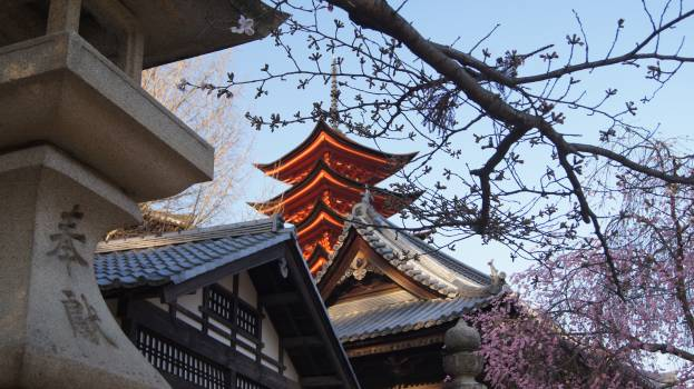 Architecture Building Temple #201933