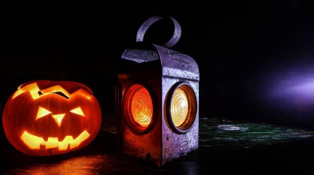 halloween pumpkin lantern  Free Photo
