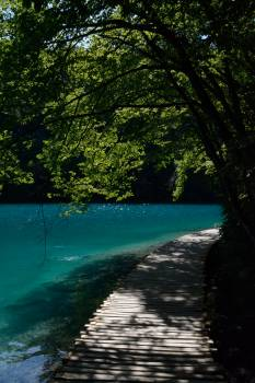 Water Landscape Lake #202910