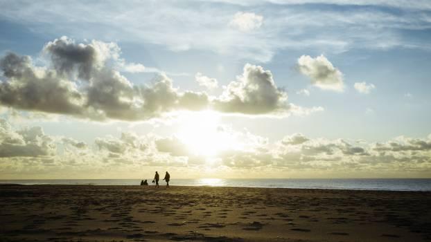 Beach Ocean Sea #203385