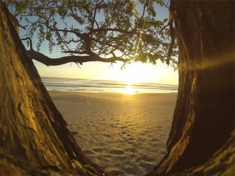 sunset beach sand  #20368