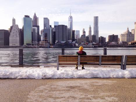 new york city buildings  Free Photo