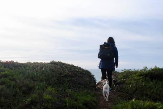 Ascent Slope Hiking Free Photo