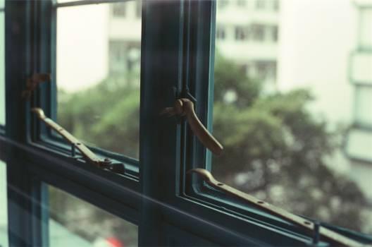 windows  #20540