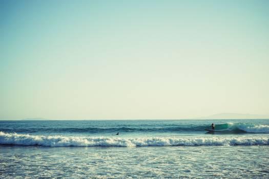 surfing surfer water  #20594