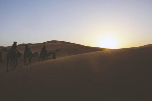desert sand dunes  Free Photo