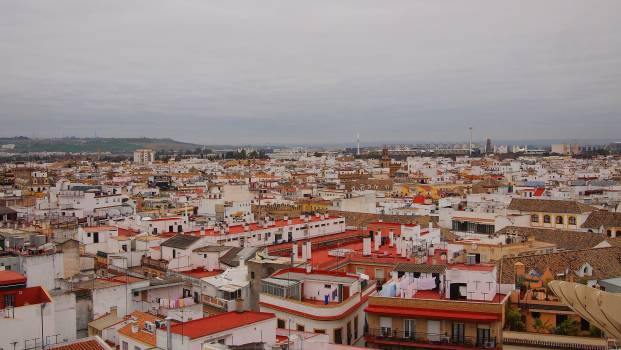city rooftops architecture  Free Photo
