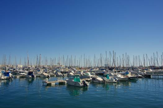 Marina Boat Harbor Free Photo