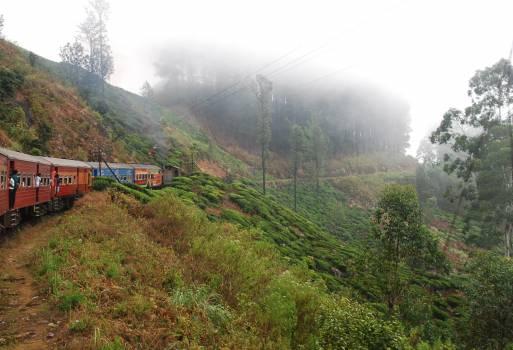 train tracks transportation  #20736