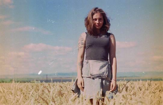 Hay Fodder Field Free Photo