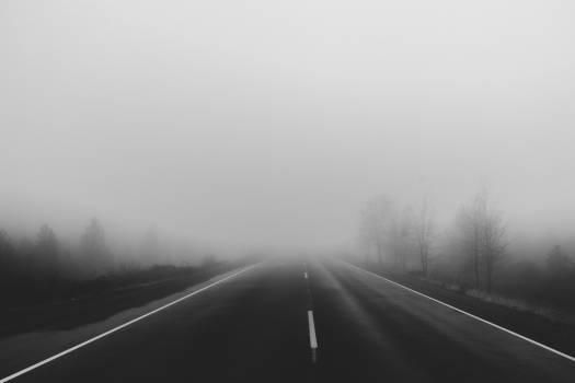 road rural fog  Free Photo