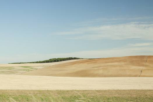fields rural countryside  Free Photo