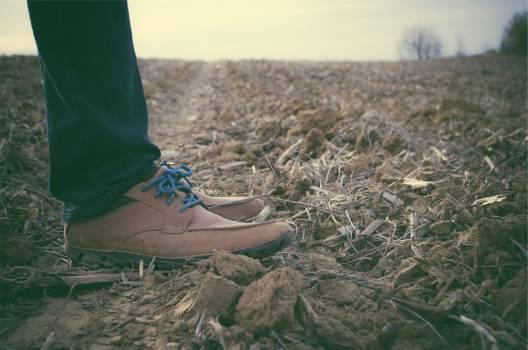 shoes laces jeans  Free Photo