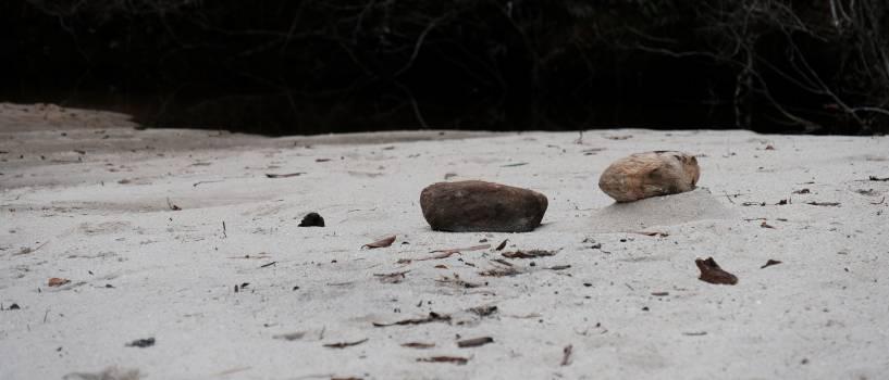 Stone Manhole cover Rock Free Photo