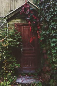 entrance door wood  Free Photo