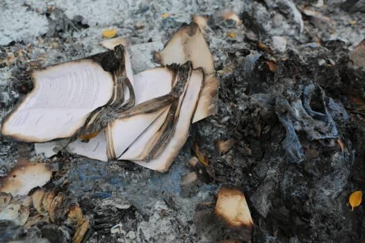 books burnt burning  Free Photo