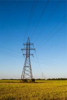 power lines grass fields  #21048