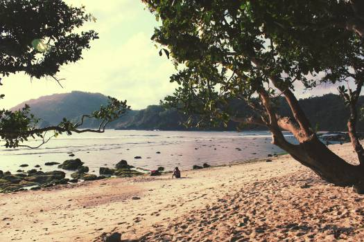 Sea Beach Water #211494
