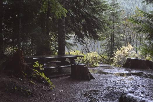 picnic table raining wet  #21160