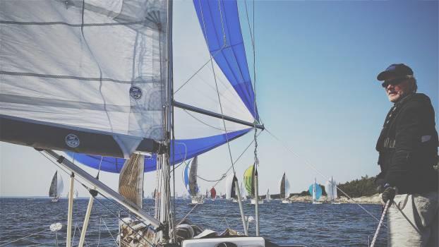 sailboats sailing sails  Free Photo