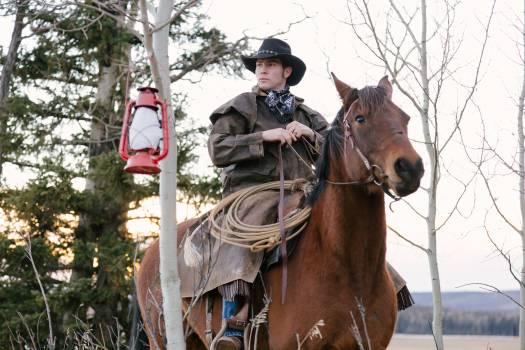 Horse Animal Cowboy Free Photo
